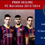 veiling3